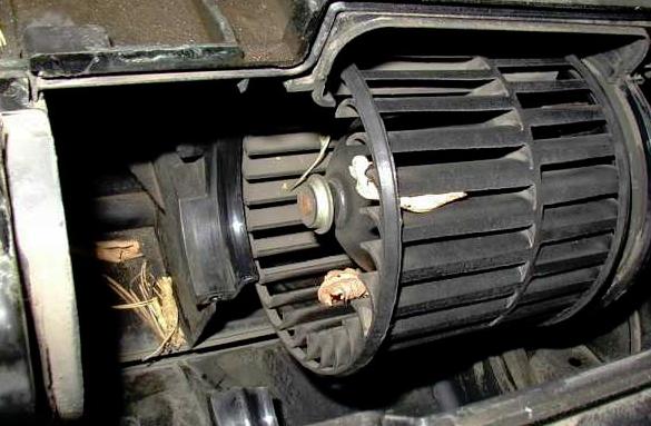 Заменяем моторчик печки